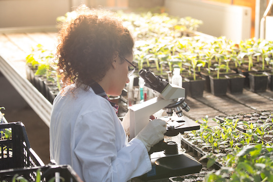 Agriculture Biotechnology Construction in San Diego